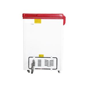 Double Temperature Top Open Double Doors Chest Freezer for Sale pictures & photos