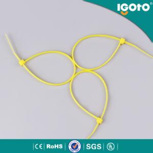 Igoto Manufacturered Nylon Self Locking Tie pictures & photos