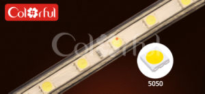 Long Life High Brightness AC230V SMD5050 LED Robbin Strip Light pictures & photos