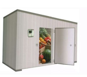 Cold Room for Meat, Fish and Chicken pictures & photos