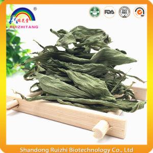 Sweetleaf Stevia Leaf Tea for Health Protection pictures & photos
