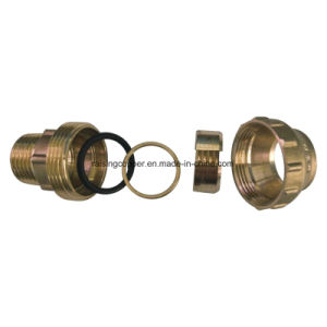 Brass Compression Male Adaptor pictures & photos