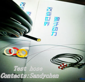 SAE100r8 Aramid Fiber Braided Resin Hose pictures & photos