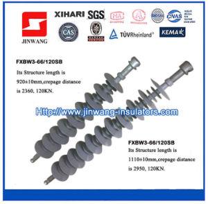 66kv Composite Suspension Insulators/ Polymeric Insulators (FXBW3-66/120SB) pictures & photos