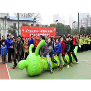 Inflatable Sport Game Inflatable PVC Caterpillar Sport Game pictures & photos