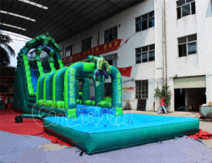 Giant Inflatable Water Slide with Slip N Slide for Rental (CHSL492-2) pictures & photos