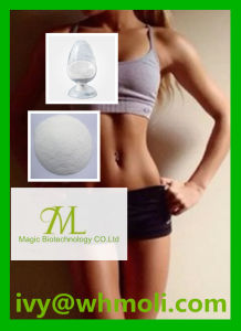 Shape and Fitness Raw Steroid T4 Sodium Levothyroxine CAS 25416-65-3 pictures & photos