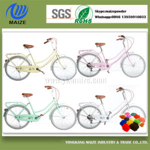 Popular Electric Bicycle Bike Frames Powder Coating Paint pictures & photos