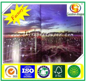 450g Glossy Art Coated Paper pictures & photos