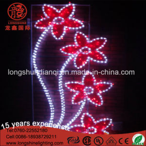 High Quality 220V 30W Motif Holiday Light for Road Decoration pictures & photos