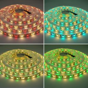 SMD 5050 60LEDs/M RGBW Waterproof / Non Waterproof Christmas Decoration Lighting pictures & photos