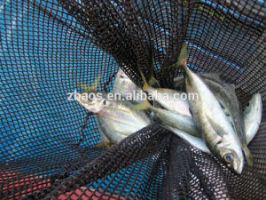 Fish Catcher Plastic Fish Netting pictures & photos