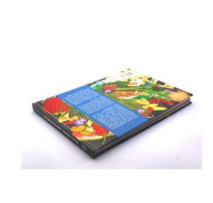 Oversea Full Color Child Book Printing (jhy-873)