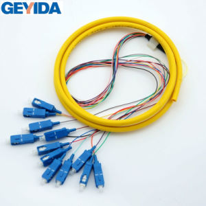 Sc/Upc 12 Core Fiber Optic Prtch Cord / Pigtail pictures & photos