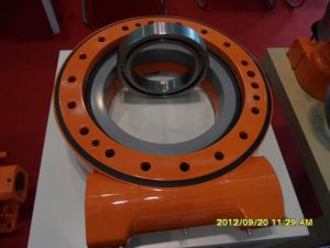 Detailed Technical Information for Heavy-Load Slewing Drive H17 Inch pictures & photos