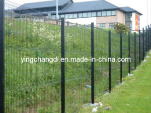 Wire Mesh Fence (AOSHENG-6005)
