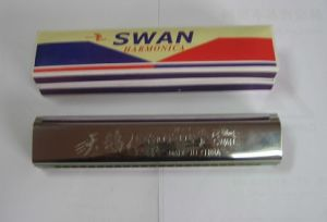 24 hole Copper Reed Plate Harmonica (SW24-8)
