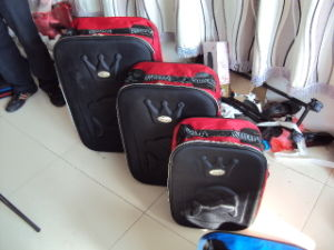 Skd Omega Trolley Luggage pictures & photos