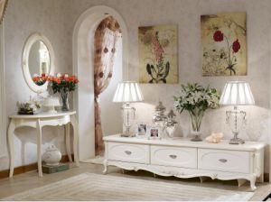 Living Room Set (BJH-217)