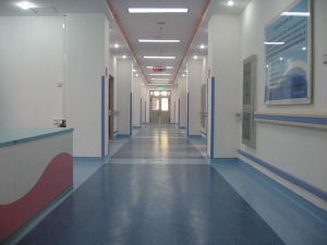 Welfare Institute PVC Wall Guard pictures & photos