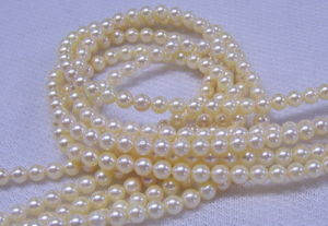 Gold Freshwater Pearls (SFP1011)