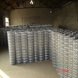 Welded Wire Mesh (Crimped)
