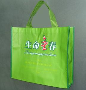 Shopping Bag (XT-B051) pictures & photos