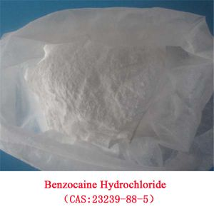 Local Anesthetic Benzocaine Hydrochloride (BENZOCAINE HCl) CAS: 23239-88-5 for Anti-Paining pictures & photos