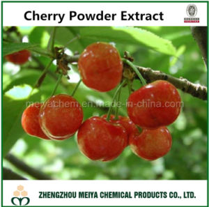 Factory Supply Best Quality Cherry Powder Extract with Vitamin C 25% pictures & photos
