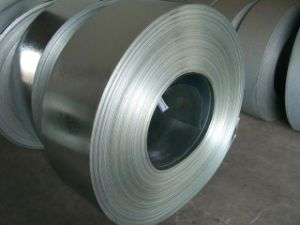 Carbon Hot Dipped Galvanized Steel Coil/Strip pictures & photos