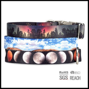 Landscape Image Print Dog Collar with Hardware Buckle pictures & photos