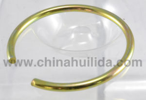 SGS Stainless Steel Retaining Ring pictures & photos