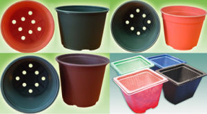 Biodegradable Flower Pots & Seedling Pots-Corn Starch Based