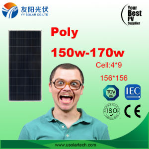 150W-170W Best Price Solar Panel in Stock pictures & photos