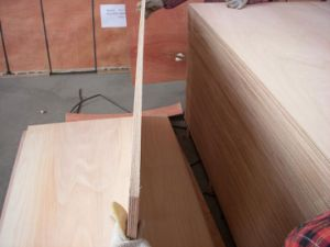 Marine Plywood (boat building) pictures & photos