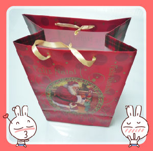 Red Gift Paper Bag /Shopping Paper Bag (XYCB007)