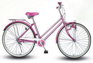 MTB/City/Road/Kid/Children/Race/Beach/Cruiser Bicycle