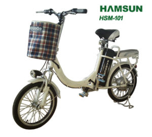 Electric Bicycle (HSM-101)