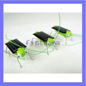 Novelty Solar Grasshopper Green Educational Solar Energy Toy pictures & photos
