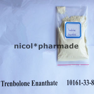 99% Purity Muscle Building Steroids Trenbolone Enanthate USP31 Standard Parabolan pictures & photos