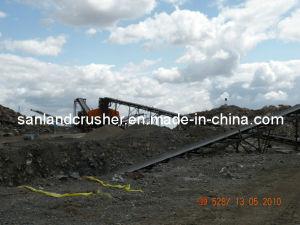 Belt Conveyor (DSCN4645) pictures & photos