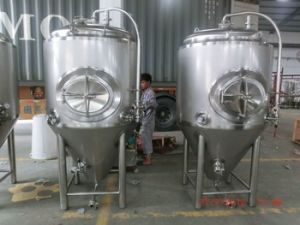 20 Barrel Stainless Steel Fermentation Vessels (MTB)