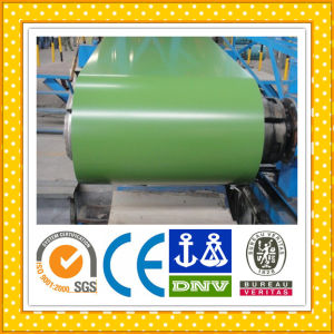 Hdp Color Coated Steel Coils/Sheets pictures & photos