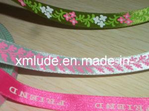 Printed Ribbon (CIMG4532)
