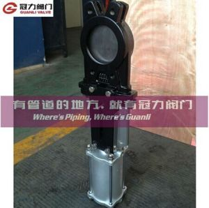 Pneumatic Knife Gate Valve with Cylinder for Water Treatment pictures & photos