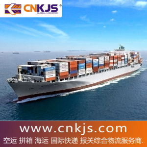 20GP/40GP/40HQ From China to PNG/Paranagua Port, Brazil