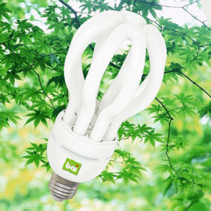 Compact Fluorescent/Lotus Energy Saving Lamp (CFL Lotus)