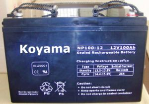 12V100ah-Valve Regulated Lead Acid Battery (NP100-12) pictures & photos