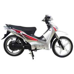 Electric Scoter (HSM-527)