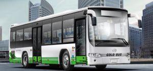 Ankai 24-45 Seats City Bus (Semi-Monocoque City Bus Series) (HFF6110GDE4B) pictures & photos